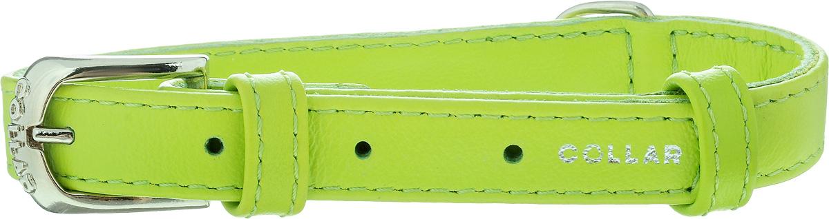 Ошейник для собак CoLLaR Glamour, цвет: зеленый, ширина 1,5 см, обхват шеи 27-36 см32705Ошейник CoLLaR Glamour изготовлен из кожи, устойчивой к влажности и перепадам температур. Клеевой слой, сверхпрочные нити, крепкие металлические элементы делают ошейник надежным и долговечным. Изделие отличается высоким качеством, удобством и универсальностью. Размер ошейника регулируется при помощи металлической пряжки. Имеется металлическое кольцо для крепления поводка. Ваша собака тоже хочет выглядеть стильно! Такой модный ошейник станет для питомца отличным украшением и выделит его среди остальных животных. Минимальный обхват шеи: 27 см. Максимальный обхват шеи: 36 см. Ширина ошейника: 1,5 см.
