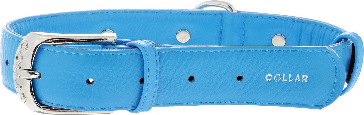 Ошейник для собак CoLLaR Glamour Аппликация, цвет: синий, оранжевый, ширина 3,5 см, обхват шеи 46-60 см35042Ошейник CoLLaR Glamour Аппликация изготовлен из кожи, устойчивой к влажности и перепадам температур. Клеевой слой, сверхпрочные нити, крепкие металлические элементы делают ошейник надежным и долговечным. Изделие отличается высоким качеством, удобством и универсальностью. Размер ошейника регулируется при помощи металлической пряжки. Имеется металлическое кольцо для крепления поводка. Ваша собака тоже хочет выглядеть стильно! Модный ошейник с аппликацией в виде цветов станет для питомца отличным украшением и выделит его среди остальных животных. Минимальный обхват шеи: 46 см. Максимальный обхват шеи: 60 см. Ширина: 3,5 см.