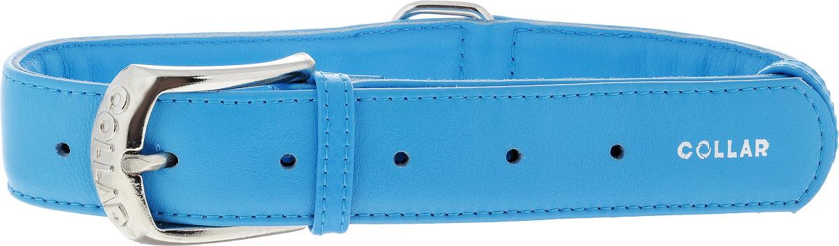Ошейник для собак CoLLaR Glamour, цвет: синий, ширина 3,5 см, обхват шеи 46-60 см33222Ошейник CoLLaR Glamour изготовлен из кожи, устойчивой к влажности и перепадам температур. Клеевой слой, сверхпрочные нити, крепкие металлические элементы делают ошейник надежным и долговечным. Изделие отличается высоким качеством, удобством и универсальностью. Размер ошейника регулируется при помощи металлической пряжки. Имеется металлическое кольцо для крепления поводка. Ваша собака тоже хочет выглядеть стильно! Такой модный ошейник станет для питомца отличным украшением и выделит его среди остальных животных. Минимальный обхват шеи: 46 см. Максимальный обхват шеи: 60 см. Ширина: 3,5 см.