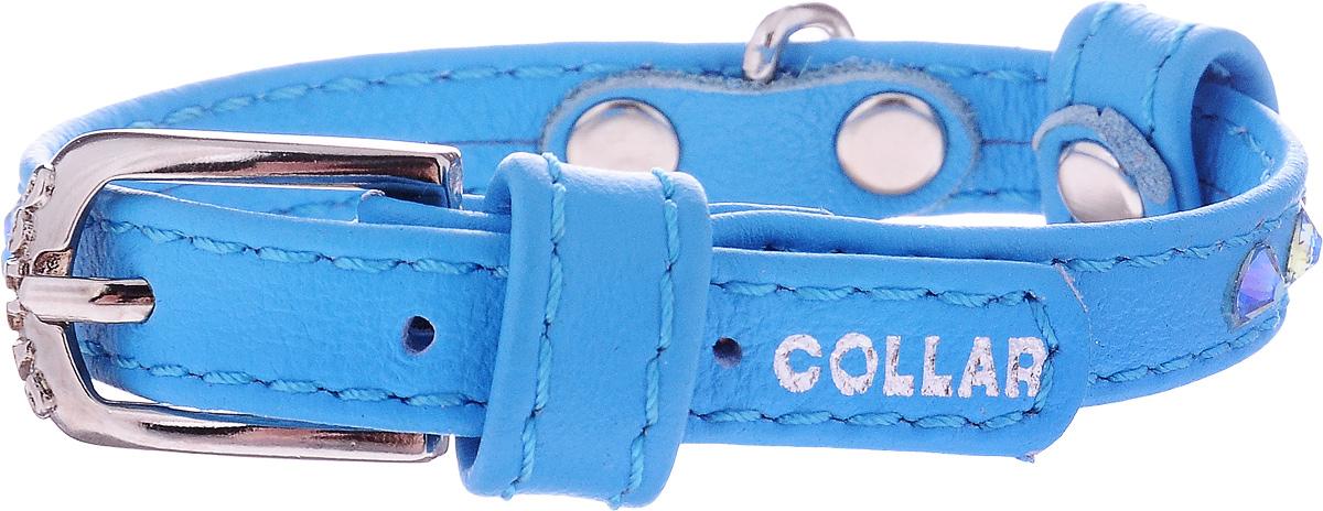 Ошейник для собак CoLLaR Glamour, цвет: синий, ширина 9 мм, обхват шеи 18-21 см32502Ошейник CoLLaR Glamour изготовлен из кожи, устойчивой к влажности и перепадам температур. Клеевой слой, сверхпрочные нити, крепкие металлические элементы делают ошейник надежным и долговечным. Изделие отличается высоким качеством, удобством и универсальностью. Размер ошейника регулируется при помощи металлической пряжки. Имеется металлическое кольцо для крепления поводка. Ваша собака тоже хочет выглядеть стильно! Модный ошейник, декорированный стразами, станет для питомца отличным украшением и выделит его среди остальных животных. Минимальный обхват шеи: 18 см. Максимальный обхват шеи: 21 см. Ширина: 9 мм.