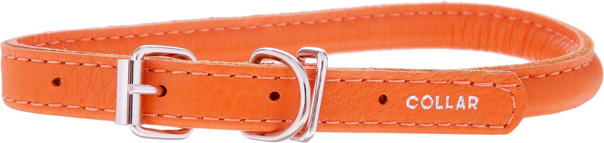 Ошейник для собак CoLLaR Glamour, цвет: оранжевый, диаметр 8 мм, обхват шеи 25-33 см22414Ошейник для собак CoLLaR Glamour, выполненный из натуральной кожи, устойчив к влажности и перепадам температур. Крепкие металлические элементы делают ошейник надежным и долговечным. Изделие отличается высоким качеством, удобством и универсальностью. Размер ошейника регулируется при помощи пряжки, зафиксированной на одном из 5 отверстий. Минимальный обхват шеи: 25 см. Максимальный обхват шеи: 33 см. Диаметр ошейника: 8 мм.