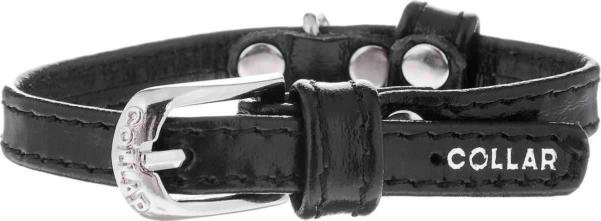 Ошейник для собак CoLLaR brilliance, цвет: черный, ширина 0,9 см, обхват шеи 18-21 см. 33643364Ошейник CoLLaR brilliance изготовлен из кожи, устойчивой к влажности и перепадам температур. Такой ошейник подойдет для щенков и собак мелких пород. Клеевой слой, сверхпрочные нити, крепкие металлические элементы делают ошейник надежным и долговечным. Изделие отличается высоким качеством, удобством и универсальностью. Размер ошейника регулируется при помощи металлической пряжки. Имеется металлическое кольцо для крепления поводка. Ваша собака тоже хочет выглядеть стильно! Модный ошейник из лакированной кожи станет для питомца отличным украшением и выделит его среди остальных животных. Минимальный обхват шеи: 18 см. Максимальный обхват шеи: 21 см. Ширина: 0,9 см.