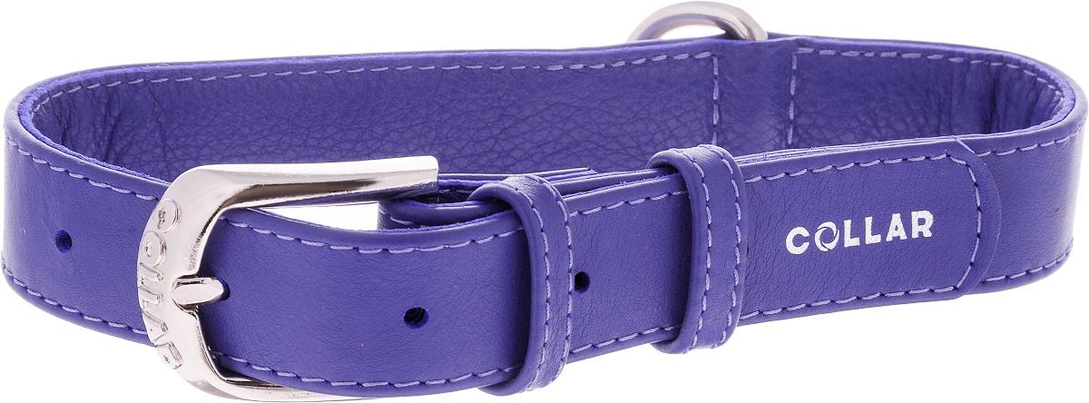 Ошейник для собак CoLLaR Glamour, цвет: фиолетовый, ширина 2,5 см, обхват шеи 38-49 см33049Ошейник CoLLaR Glamour изготовлен из кожи, устойчивой к влажности и перепадам температур. Клеевой слой, сверхпрочные нити, крепкие металлические элементы делают ошейник надежным и долговечным. Изделие отличается высоким качеством, удобством и универсальностью. Размер ошейника регулируется при помощи металлической пряжки. Имеется металлическое кольцо для крепления поводка. Ваша собака тоже хочет выглядеть стильно! Такой модный ошейник станет для питомца отличным украшением и выделит его среди остальных животных. Минимальный обхват шеи: 38 см. Максимальный обхват шеи: 49 см. Ширина: 2,5 см.