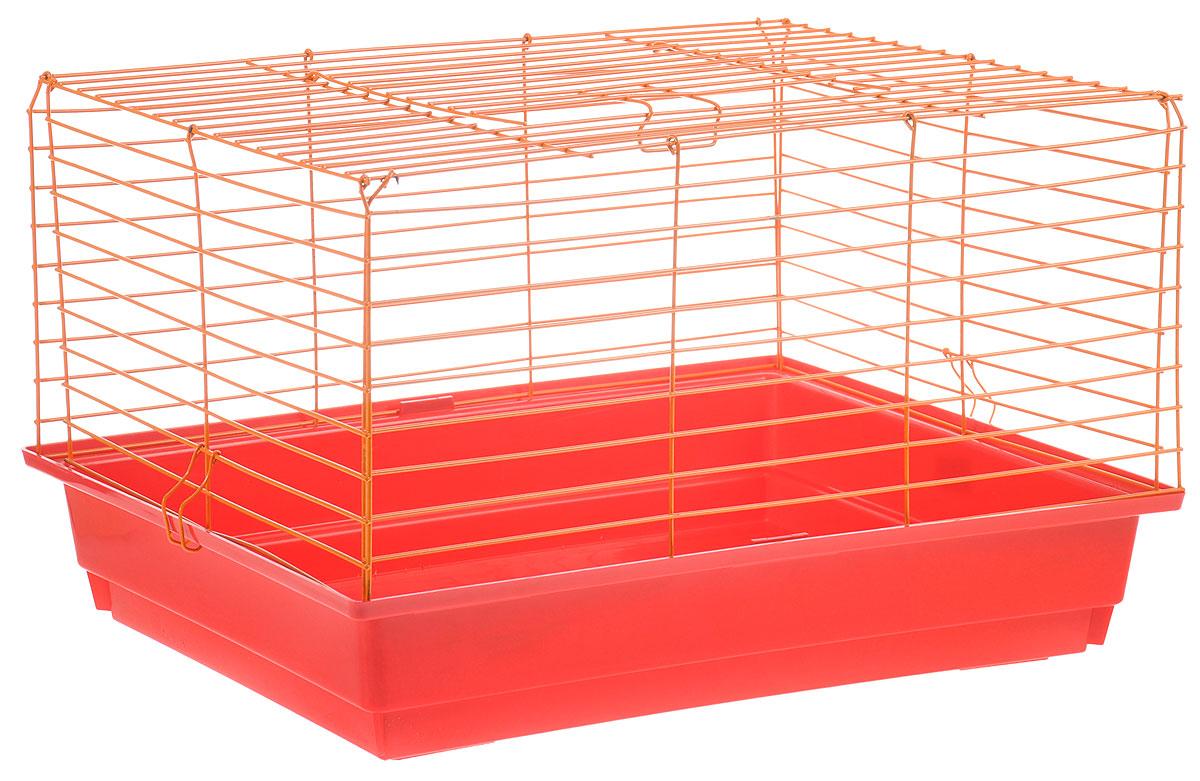 Клетка для кролика ЗооМарк, цвет: красный поддон, оранжевая решетка, 50 х 35 х 30 см610КОКлассическая клетка ЗооМарк со сплошным дном станет уединенным личным пространством и уютным домиком для кролика. Изделие выполнено из металла и пластика. Клетка надежно закрывается на защелки. Легко чистится. Для более удобной транспортировки клетку можно сложить.