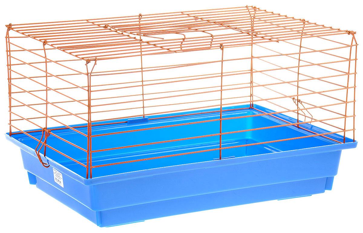 Клетка для кролика ЗооМарк, цвет: синий поддон, оранжевая решетка, 60 х 40 х 35 см620СОКлассическая клетка ЗооМарк со сплошным дном станет уединенным личным пространством и уютным домиком для кролика. Изделие выполнено из металла и пластика. Клетка надежно закрывается на защелки. Легко чистится. Для более удобной транспортировки клетку можно сложить.