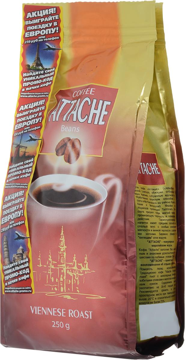 Attache Венская обжарка кофе в зернах, 250 г4600946000629Кофе Attache светлой обжарки обладает мягким привкусом, проникающей терпкостью и освежающим действием. Свежеприготовленный напиток имеет среднюю плотность и спелый вкус. Кофе наполнит вас желанным и знакомым удовольствием путешествия по любимым уголкам Европы.