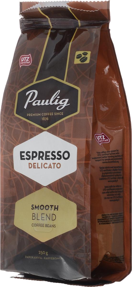 Paulig Espresso Delicato кофе в зернах, 250 г16714Кофе в зернах Paulig Espresso Delicato - самый нежный эспрессо-бленд с восхитительным мягким вкусом. На его создание вдохновил Милан. Он изготовлен из отборных кофейных зерен 100% арабики из Бразилии и Центральной Америки. Деликатный вкус эспрессо раскрывает превосходные оттенки аромата и особую сладость во вкусе.