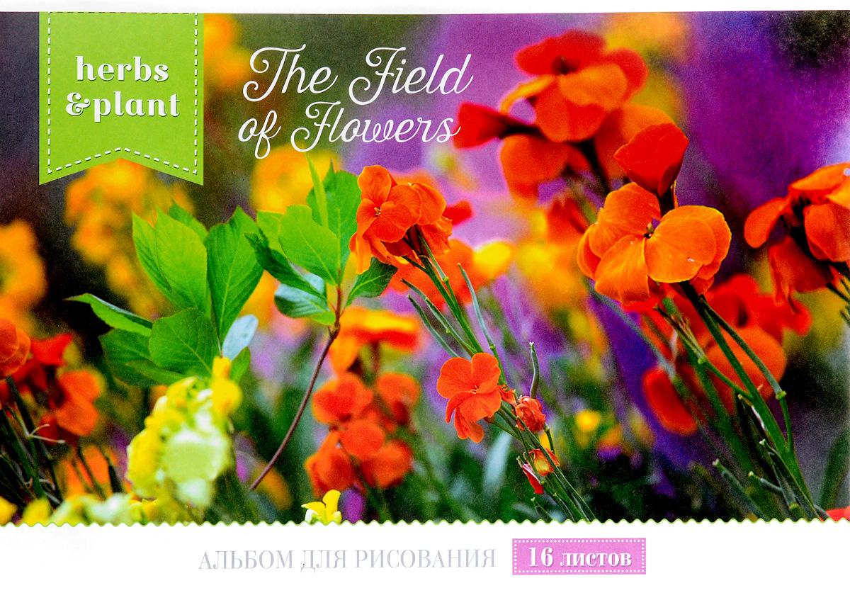 ArtSpace Альбом для рисования Magic Flower 16 листов