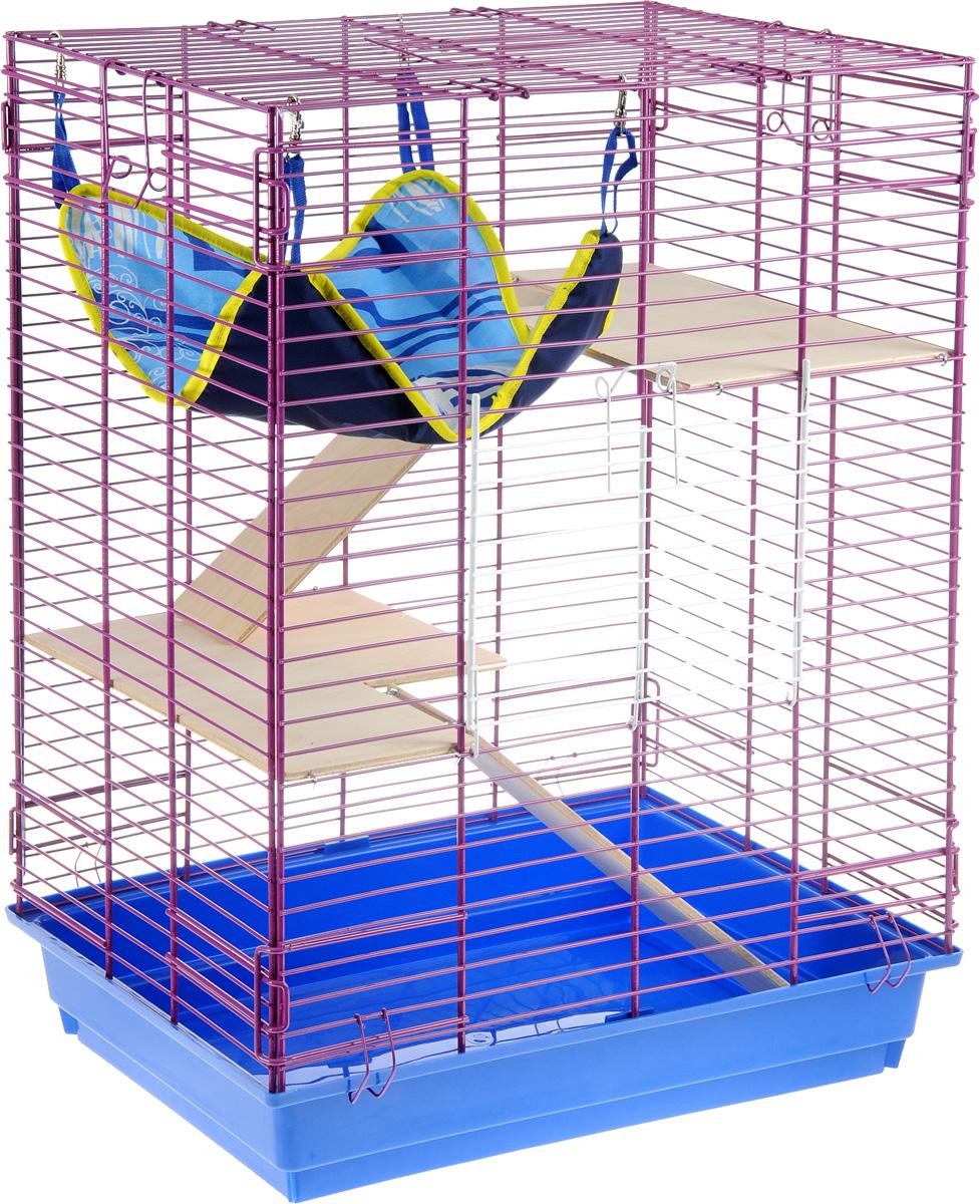 Клетка для шиншилл и хорьков ЗооМарк, цвет: синий поддон, фиолетовая решетка, 59 х 41 х 79 см725дкСФКлетка ЗооМарк, выполненная из полипропилена и металла, подходит для шиншилл и хорьков. Большая клетка оборудована длинными лестницами и гамаком. Изделие имеет яркий поддон, удобно в использовании и легко чистится. Сверху имеется ручка для переноски. Такая клетка станет уединенным личным пространством и уютным домиком для грызуна.