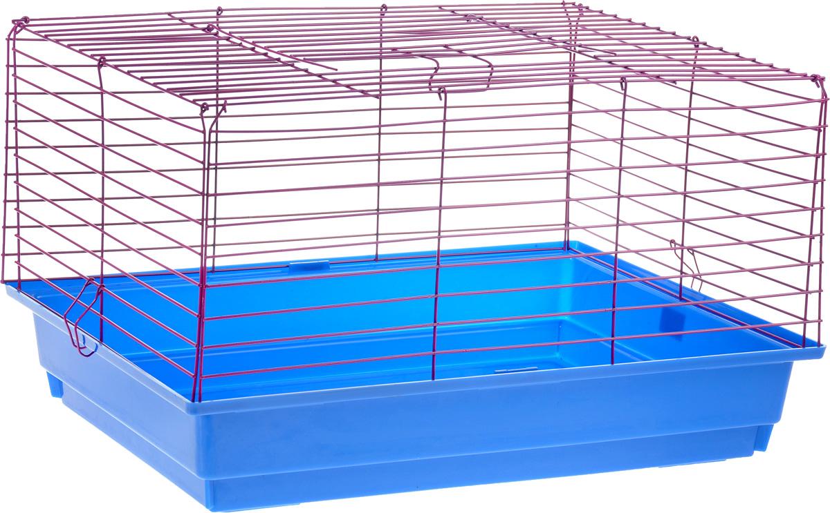 Клетка для кролика ЗооМарк, цвет: синий поддон, фиолетовая решетка, 60 х 40 х 35 см620СФКлассическая клетка ЗооМарк со сплошным дном станет уединенным личным пространством и уютным домиком для кролика. Изделие выполнено из металла и пластика. Клетка надежно закрывается на защелки. Легко чистится. Для более удобной транспортировки клетку можно сложить.