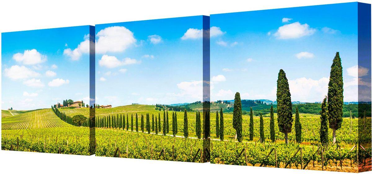 Картина модульная Toplight Пейзаж, 150 х 50 см. TL-M2001TL-M2001Модульная картина Toplight Пейзаж выполнена из синтетического полотна, подрамник из МДФ. Картина состоит из трех частей и выглядит очень аккуратно и эстетично благодаря такому способу оформления как галерейная натяжка. Подрамник исключает провисание полотна. Современные технологии, уникальное оборудование и цифровая печать, используемые в производстве, делают постер устойчивым к выцветанию и обеспечивают исключительное качество произведений. Благодаря наличию необходимых креплений в комплекте установка не займет много времени. Модульная картина - это прекрасная возможность создать яркий акцент при оформлении любого помещения. Изделие обязательно привлечет внимание и подарит немало приятных впечатлений своим обладателям. Правила ухода: можно протирать сухой, мягкой тканью. Рекомендованное расстояние между сегментами: 2 см. Толщина подрамника: 3 см.
