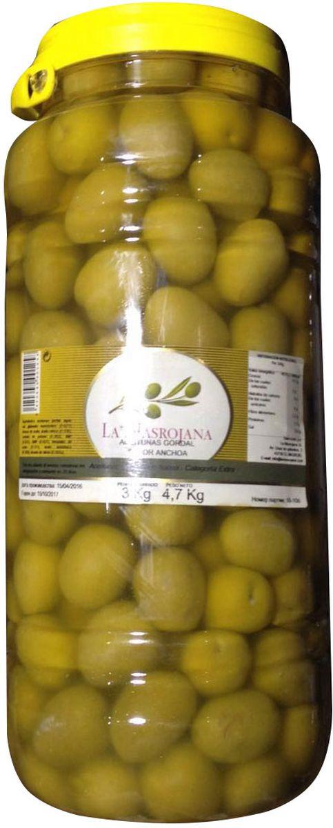 La Masrojana Оливки зеленые гигантские Гордаль со вкусом анчоуса, 4,7 кг8420642000183Гигантские зеленые оливки Гордаль со вкусом анчоуса: пикантная закуска и дополнение к горячим блюдам в стиле средиземноморской кухни. Эти оливки самые большие из существующих на испанском рынке (размером с небольшую сливу). Самые популярные оливки в Испании благодаря отменному вкусу и яркому внешнему виду. Изготовлены компанией La Masrojana, расположенной в Террагоне в природном заповеднике. Cбор оливок осуществляется вручную, в результате оливки отличного качества и после обработки имеют исключительный цвет и аромат, который отражает традиции и образ жизни.