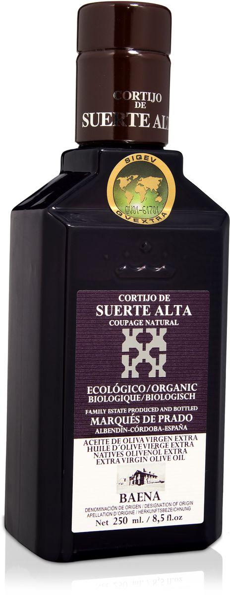 Suerte Alta Купаж оливковое масло Extra Virgin, 250 мл8437009165515Суэртэ Альта Купаж - нерафинированное оливковое масло первого холодного отжима премиум класса кислотностью 0,2%, которая является лечебной по испанским законам. ЭКОЛОГИЧЕСКИЙ ФЕРМЕРСКИЙ ПРОДУКТ из нескольких сортов оливок раннего сбора урожая. Диетический продукт! ОРГАНИЧЕСКОЕ оливковое масло от семьи Мануэля Эредия Альскон, маркиза Прадо. Компания основана его дедом в 1924 году. С 1996 года компания официально занимается Органическим сельским хозяйством, о чем свидетельствует сертификат C.A.A.E.- Совета по органическому земледелию Андалусии, а также аналогичные сертификаты США, Японии и Европейского совета. Поместье находится недалеко от городка Баэна (провинция Кордоба) - официальной столицы оливкового масла Испании. Именно здесь ежегодно проходит праздник молодого оливкового масла.