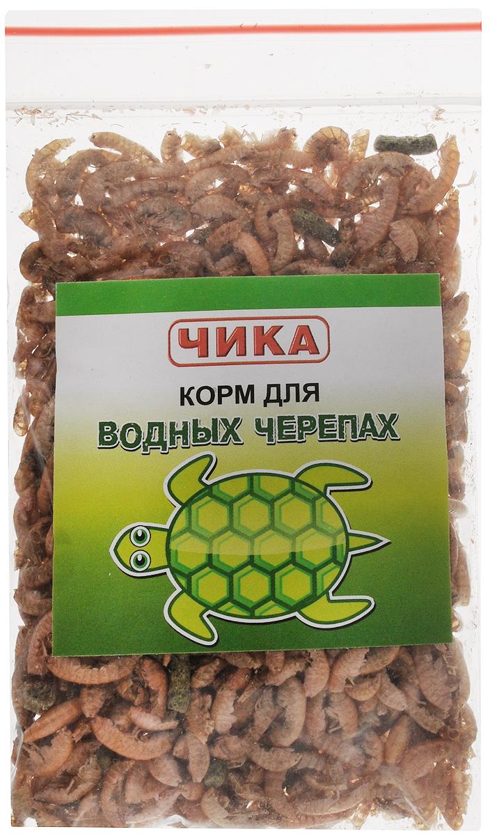 Корм для водных черепах Чика, 85 мл. 46070450602954607045060295Корм для водных черепах Чика - это кормовая смесь для ежедневного употребления. Содержит обязательный для водных черепах гаммарус (водные рачки) и гранулы, приготовленные из натуральных ингредиентов: рыбы, водорослей, мотыля и другого. Корм содержит полный набор витаминов и минеральных добавок, необходимых для нормального развития водяных черепах и укрепления их панциря. Кормить черепах нужно 1-2 раза в день. Переедание для черепах опасно, поэтому лучше недокормить, чем перекормить. Товар сертифицирован.