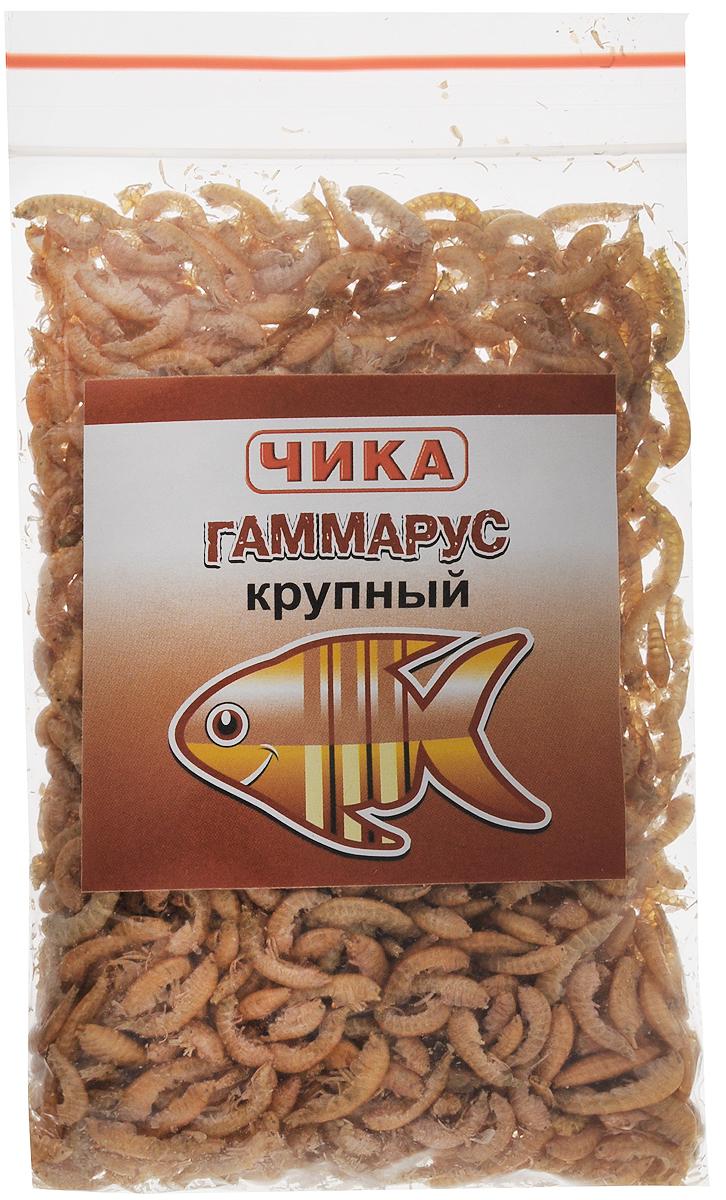 Корм для рыб Чика Гаммарус, крупный, 85 мл. 46070450602714607045060271Корм для рыб Чика Гаммарус - изготовлен методом сублимированной сушки пресноводных рачков-бокоплавов. Корм быстро поглощает воду и приобретает свойства, близкие к естественным. Гаммарус считается одним из лучших кормов, благодаря своей высокой питательной ценности (более 52% белков), большому содержанию каротина (витамина А и его провитаминов) для яркой окраски и хитина. Он с удовольствием поедается средними и крупными рыбами, а также водоплавающими, птицами, рептилиями и грызунами. Гаммарус способствует очистке пищеварительной системы. Не забывайте удалять несъеденные остатки корма. Остатки корма нужно удалить. Товар сертифицирован.