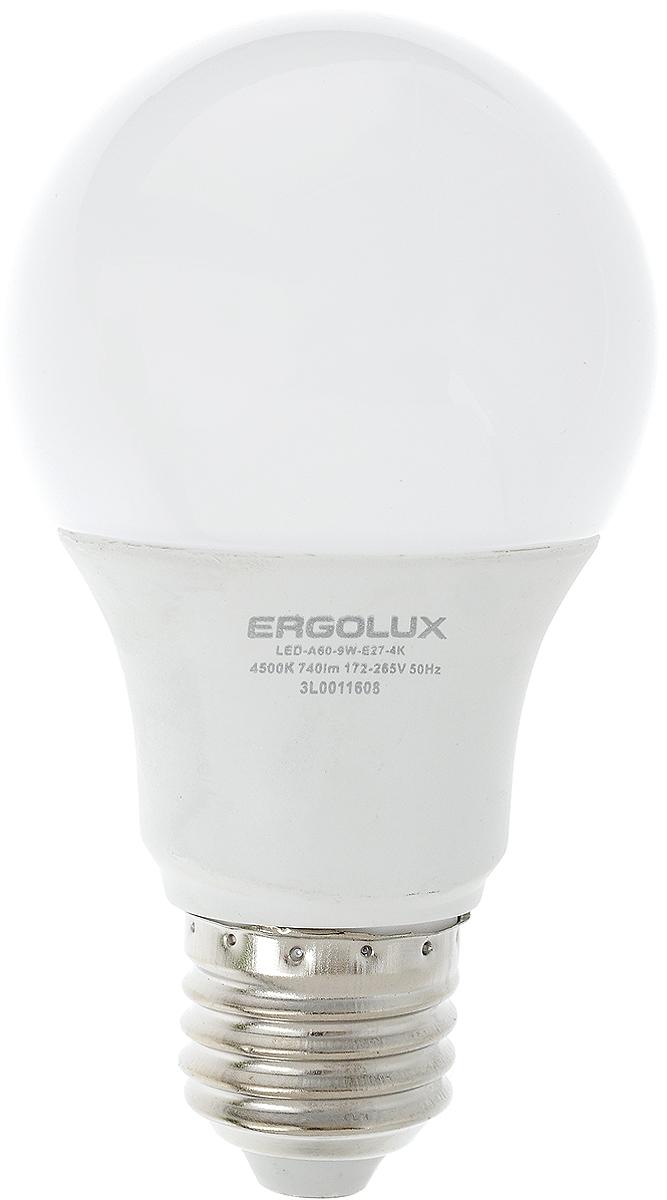 Лампа светодиодная Ergolux, цоколь E27, 9W, 4500К12412Светодиодная лампа Ergolux - новое решение в светотехнике. Светодиодная лампа экономит много электроэнергии благодаря низкой потребляемой мощности. Она идеальна для основного и акцентного освещения интерьеров, витрин, декоративной подсветки. Кроме того, создает уютную атмосферу и позволяет экономить электроэнергию уже с первого дня использования. Не содержит ртути и не требует переработки. Срок службы в 2,5-3 раза дольше энергосберегающей лампы и в 30 раз дольше лампы накаливания. Высокая ударопрочность благодаря металло-пластиковому корпусу. Мгновенное включения. Без мерцания. Напряжение: 172-265 В. Угол светового пучка: 270°. Эффективность: 82 лм/Вт. Тип: А60. Индекс цветопередачи: 77+. Рабочая температура: -30 - +40°С.