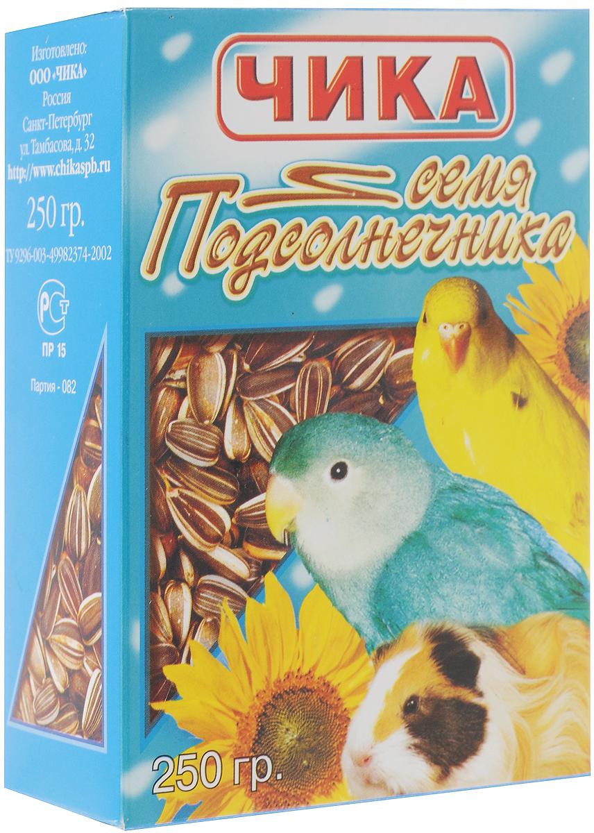 Добавка к корму Чика Семена подсолнечника для попугаев и грызунов, 250 г4607045060141Чика Семена подсолнечника - это высокопитательная добавка к корму для всех видов попугаев и грызунов. Семечки этой масличной культуры содержат от 25% до 45% растительного масла. В их состав входят незаменимые жирные кислоты и минеральные вещества (кальций, фосфор, натрий – для крепкой костной системы). Семена подсолнечника скармливают только в сыром виде. Не следует давать их в большом количестве попугаям - в среднем 1 чайная ложка в сутки. Очень питательная и, полезная для зубов, добавка в рационе для всех видов грызунов. Употребляя добавку к корму Чика Семена подсолнечника, ваш питомец будет здоровым и жизнерадостным. Товар сертифицирован.