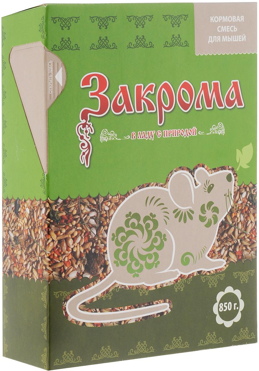 Корм для мышей Закрома, 850 г4620770270104Корм Закрома - это сбалансированное сочетание растительных компонентов. Корм обеспечит необходимое количество питательных веществ, минералов и натуральных витаминов для ежедневного кормления вашей мышки. В корм добавлен сушеный гаммарус, который является дополнительным источником белка (более 76,5%), кальция и железа. А для повышения питательной ценности добавлены мясные кусочки, содержащие большое количество аминокислот, минеральных веществ и витаминов. Употребляя корм Закрома, ваш питомец будет здоровым и активным. Товар сертифицирован.
