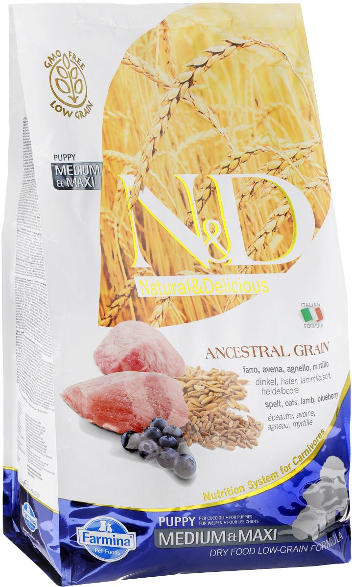 Корм сухой Farmina N&D для щенков, беременных и кормящих собак, низкозерновой, с ягненком и черникой, 2,5 кг33710Сухой корм Farmina N&D является низкозерновым и сбалансированным питанием для щенков, беременных и кормящих собак. Изделие имеет высокое содержание витаминов и питательных веществ. Сухой корм содержит натуральные компоненты, которые необходимы для полноценного и здорового питания домашних животных. Линия продуктов Farmina N&D - это сухие корма для собак, рецептура которых построена по принципу питания плотоядных животных. Товар сертифицирован.