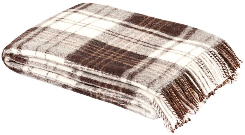 Плед Андо, 170 см х 200 см. 1-224-170_031-224-170_03Теплый пушистый плед Андо, выполненный из натуральной новозеландской овечьей шерсти, добавит комнате уюта и согреет в прохладные дни. Удобный размер этого качественного пледа позволит использовать его и как одеяло, и как покрывало для кресла или софы. Плед с кистями. Плед упакован в пластиковую сумку-чехол на застежке-молнии, а прочная текстильная ручка делает чехол удобным для переноски. Такое теплое украшение может стать отличным подарком друзьям и близким! Под шерстяным пледом вам никогда не станет жарко или холодно, он помогает поддерживать постоянную температуру тела. Шерсть обладает прекрасной воздухопроницаемостью, она поглощает и нейтрализует вредные вещества и славится своими целебными свойствами. Плед из шерсти станет лучшим лекарством для людей, страдающих ревматизмом, радикулитом, головными и мышечными болями, сердечно-сосудистыми заболеваниями и нарушениями кровообращения. Шерсть не электризуется. Она прочна, износостойка, долговечна. Наконец, шерсть...