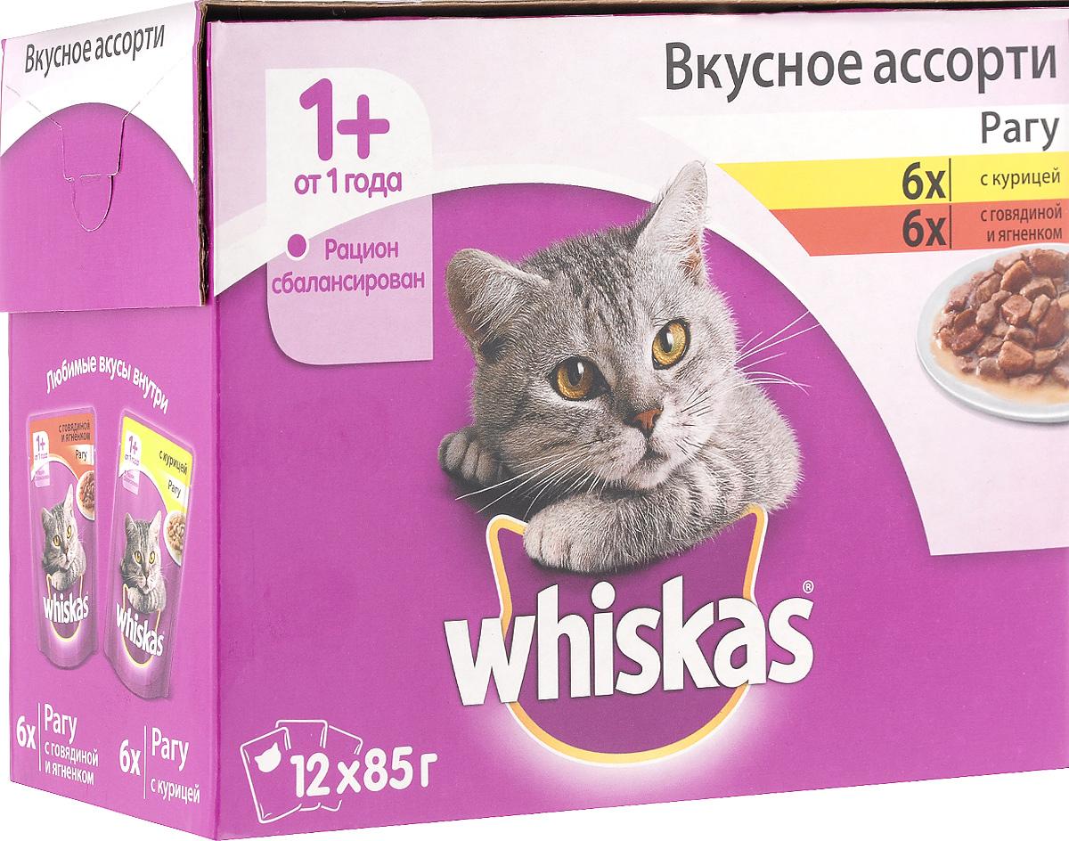 Консервы для взрослых кошек Whiskas Вкусное ассорти, 2 вида, 12 шт57027_2 видаКонсервы Whiskas Вкусное ассорти - это полноценное мясное меню на каждый день, которое обязательно придется по вкусу вашему питомцу. В нем есть все, что так любят кошки: сочное мясо и аппетитная курочка. Тщательно сбалансированный рацион содержит все питательные вещества, витамины и минералы, необходимые вашей кошке каждый день. В набор Whiskas Вкусное ассорти входят: - рагу с говядиной и ягненком - 6 х 85 г; - рагу с курицей - 6 х 85 г. Товар сертифицирован.