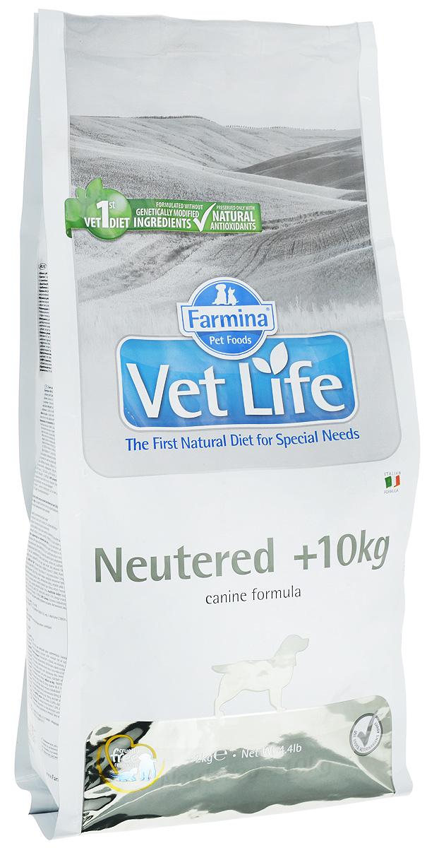 Корм сухой Farmina Vet Life для взрослых кастрированных или стерилизованных собак весом более 10 кг, диетический, 2 кг22462Корм сухой Farmina Vet Life - полноценное и сбалансированное питание для взрослых кастрированных или стерилизованных собак весом более 10 кг для контроля веса и профилактики развития мочекаменной болезни. Рацион с низким содержанием жира и высоким содержанием белка обеспечивает поддержание оптимальной массы тела. L-карнитин стимулирует окисление жиров и преобразование их в энергию. Низкое содержание углеводов снижает вероятность развития диабета. Сульфат кальция способствует контролю pH мочи и снижает риск развития мочекаменной болезни. Рекомендации по кормлению: использовать по назначению ветеринарного врача. Товар сертифицирован.