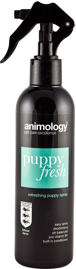 Шампунь-спрей с кондиционером Animology Puppy Fresh Refreshing от неприятных запахов, дезодорирующий, для щенков, 250 мл10184Animology Puppy Fresh (Паппи Фрэш) - освежающий шампунь-спрей с кондиционером с тонким ароматом, обогащён витаминами, устраняет неприятные запахи, уничтожает бактерии, вызывающие аллергию у людей и животных, поддерживает шерсть щенка свежей, чистой и здоровой. Розничная упаковка: Флакон-спрей 250 мл Инструкция по применению Распылите на сухую шерсть животного равномерно с расстояния около 20 см., вычешите щёткой из шерсти остатки шампуня и оставьте, не смывая водой. При необходимости повторите процедуру ещё раз.