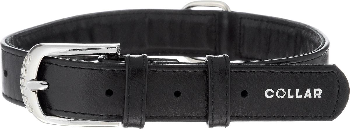 Ошейник для собак CoLLaR Glamour, цвет: черный, ширина 2,5 см, обхват шеи 38-49 см33041Ошейник CoLLaR Glamour изготовлен из натуральной кожи, устойчивой к влажности и перепадам температур. Клеевой слой, сверхпрочные нити, крепкие металлические элементы делают ошейник надежным и долговечным. Размер ошейника регулируется при помощи металлической пряжки. Имеется металлическое кольцо для крепления поводка. Ваша собака тоже хочет выглядеть стильно! Такой модный ошейник станет для питомца отличным украшением и выделит его среди остальных животных. Изделие отличается высоким качеством, удобством и универсальностью. Обхват шеи: 38-49 см. Ширина: 2,5 см.