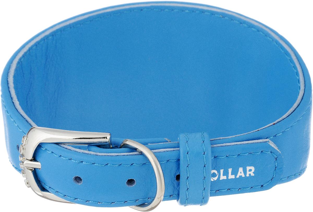 Ошейник для борзых собак CoLLaR Glamour, цвет: голубой, ширина 1,5 см, обхват шеи 26-32 см34652Ошейник для борзых собак CoLLaR Glamour, выполненный из натуральной кожи, устойчив к влажности и перепадам температур. Крепкие металлические элементы делают ошейник надежным и долговечным. Изделие отличается высоким качеством, удобством и универсальностью. Размер ошейника регулируется при помощи пряжки, зафиксированной на одном из 5 отверстий. Минимальный обхват шеи: 26 см. Максимальный обхват шеи: 32 см. Минимальная ширина: 1,5 см. Максимальная ширина: 5,5 см.
