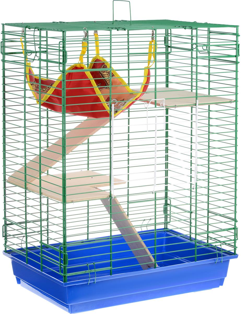 Клетка для шиншилл и хорьков ЗооМарк, цвет: синий поддон, зеленая решетка, 59 х 41 х 79 см. 725дк725дкСЗКлетка ЗооМарк, выполненная из полипропилена и металла, подходит для шиншилл и хорьков. Большая клетка оборудована длинными лестницами и гамаком. Изделие имеет яркий поддон, удобно в использовании и легко чистится. Сверху имеется ручка для переноски. Такая клетка станет уединенным личным пространством и уютным домиком для грызуна.
