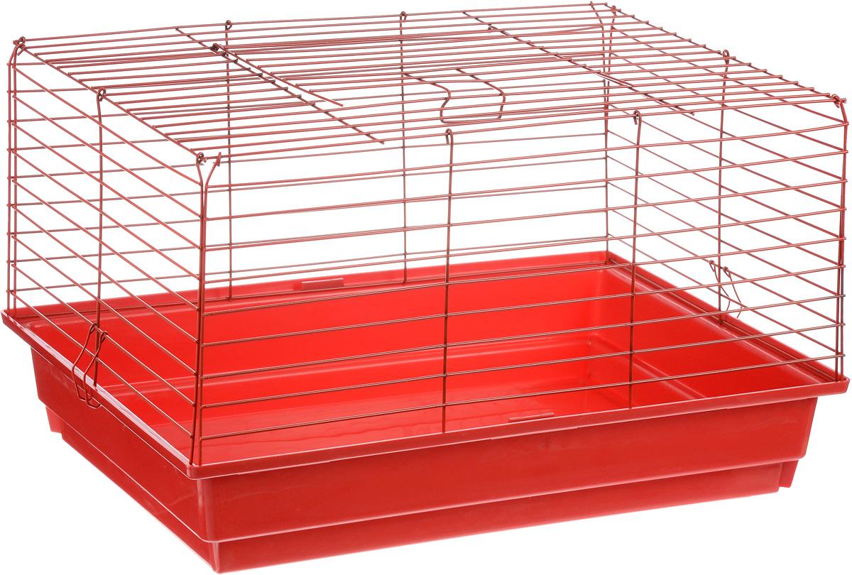Клетка для кролика ЗооМарк, цвет: красный поддон, красная решетка, 60 х 40 х 35 см620КККлассическая клетка ЗооМарк со сплошным дном станет уединенным личным пространством и уютным домиком для кролика. Изделие выполнено из металла и пластика. Клетка надежно закрывается на защелки. Легко чистится. Для более удобной транспортировки клетку можно сложить.