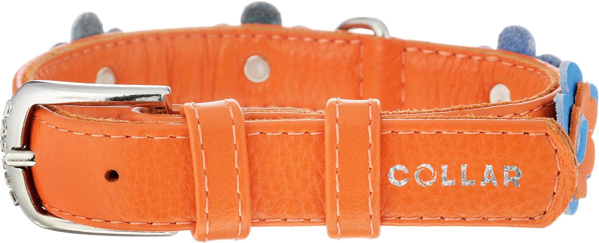 Ошейник для собак CoLLaR Glamour Аппликация, цвет: оранжевый, голубой, ширина 2 см, обхват шеи 30-39 см35024Ошейник CoLLaR Glamour изготовлен из натуральной кожи, устойчивой к влажности и перепадам температур. Клеевой слой, сверхпрочные нити, крепкие металлические элементы делают ошейник надежным и долговечным. Изделие декорировано аппликациями в виде цветочков. Размер ошейника регулируется при помощи металлической пряжки. Имеется металлическое кольцо для крепления поводка. Ваша собака тоже хочет выглядеть стильно! Такой модный ошейник станет для питомца отличным украшением и выделит его среди остальных животных. Изделие отличается высоким качеством, удобством и универсальностью. Обхват шеи: 30-39 см. Ширина: 2 см.