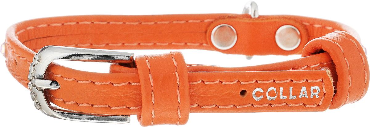 Ошейник для собак CoLLaR Glamour, цвет: оранжевый, ширина 9 мм, обхват шеи 19-25 см32524Ошейник CoLLaR Glamour изготовлен из натуральной кожи, устойчивой к влажности и перепадам температур. Клеевой слой, сверхпрочные нити, крепкие металлические элементы делают ошейник надежным и долговечным. Изделие отличается высоким качеством, удобством и универсальностью. Размер ошейника регулируется при помощи металлической пряжки. Имеется металлическое кольцо для крепления поводка. Ваша собака тоже хочет выглядеть стильно! Модный ошейник, декорированный стразами, станет для питомца отличным украшением и выделит его среди остальных животных. Минимальный обхват шеи: 19 см. Максимальный обхват шеи: 25 см. Ширина: 9 мм.