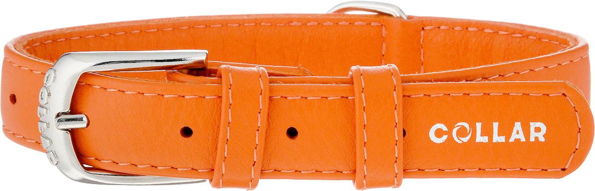Ошейник для собак CoLLaR Glamour, цвет: оранжевый, ширина 2 см, обхват шеи 30-39 см32934Ошейник CoLLaR Glamour изготовлен из натуральной кожи, устойчивой к влажности и перепадам температур. Клеевой слой, сверхпрочные нити, крепкие металлические элементы делают ошейник надежным и долговечным. Изделие отличается высоким качеством, удобством и универсальностью. Размер ошейника регулируется при помощи металлической пряжки. Имеется металлическое кольцо для крепления поводка. Ваша собака тоже хочет выглядеть стильно! Такой модный ошейник станет для питомца отличным украшением и выделит его среди остальных животных. Минимальный обхват шеи: 30 см. Максимальный обхват шеи: 39 см. Ширина: 2 см.