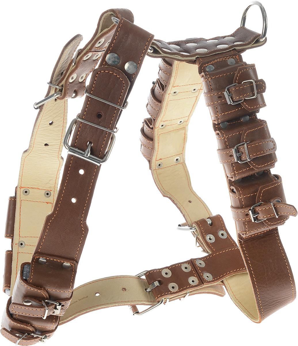 Шлея для собак CoLLaR, с утяжелителями, цвет: коричневый, бежевый, ширина 4,5 см, обхват груди 77-87 см06586_коричневый, бежевыйШлея CoLLaR, выполненная из натуральной кожи, оснащена утяжелителями и может использоваться при выгуле или дрессировке бойцовых и служебных собак крупных пород при нехватке нагрузки и недостаточной мышечной массе. Нагрузку можно регулировать путем изъятия грузиков из расстегивающихся карманов. Крепкие металлические элементы делают ее надежной и долговечной. Размер регулируется при помощи пряжки. Шлея для собак CoLLaR отличается высоким качеством, удобством и универсальностью. Обхват груди: 77-87 см. Обхват шеи: 64-83 см. Ширина шлеи: 4,5 см. Количество грузиков: 10. Вес грузика: 450 г.