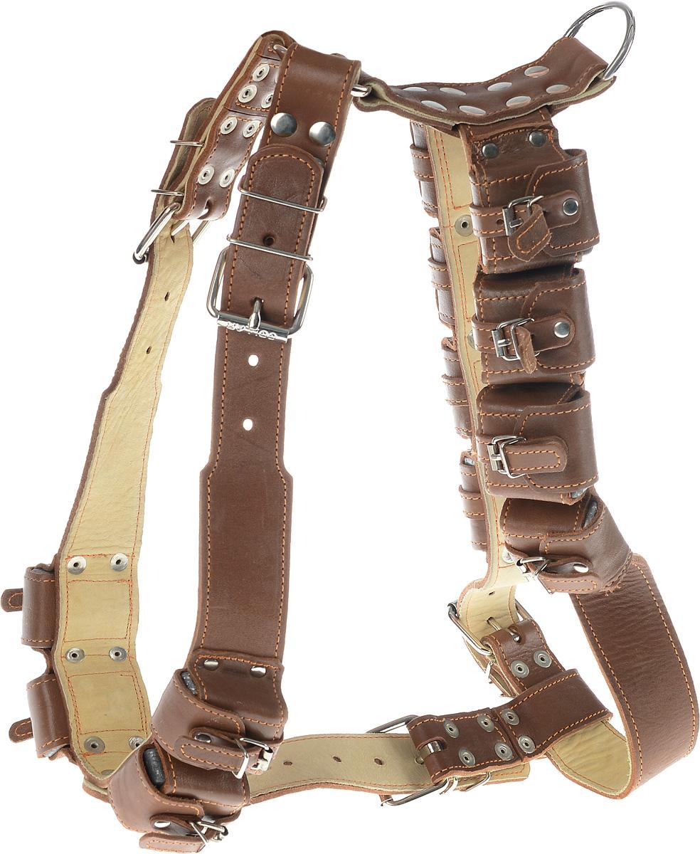 Шлея для собак CoLLaR, с утяжелителями, цвет: коричневый, бежевый, ширина 4,5 см, обхват груди 92-100 см06606_коричневый, бежевыйШлея CoLLaR, выполненная из натуральной кожи, оснащена утяжелителями и может использоваться при выгуле или дрессировке бойцовых и служебных собак крупных пород при нехватке нагрузки и недостаточной мышечной массе. Нагрузку можно регулировать путем изъятия грузиков из расстегивающихся карманов. Крепкие металлические элементы делают ее надежной и долговечной. Размер регулируется при помощи пряжки. Шлея для собак CoLLaR отличается высоким качеством, удобством и универсальностью. Обхват груди: 92-100 см. Обхват шеи: 76-91 см. Ширина шлеи: 4,5 см. Количество грузиков: 12. Вес грузика: 450 г.