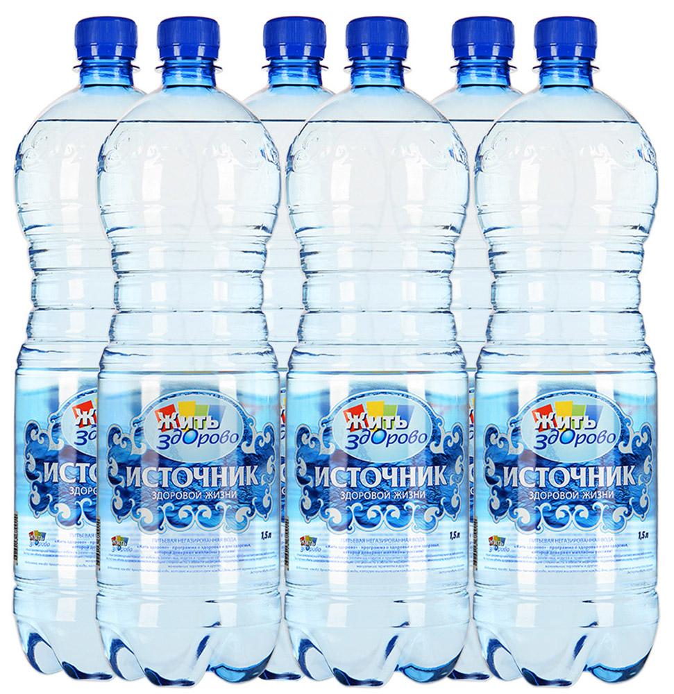 Источник здоровой жизни питьевая вода негазированная, 1,5 л