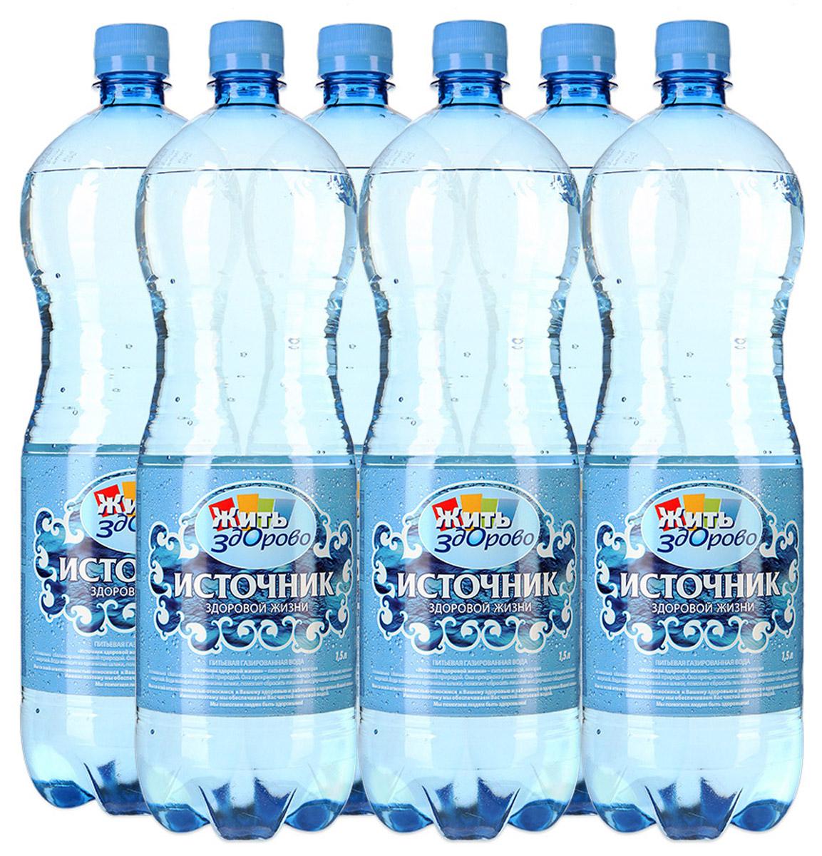 Источник здоровой жизни питьевая вода газированная 1,5 л