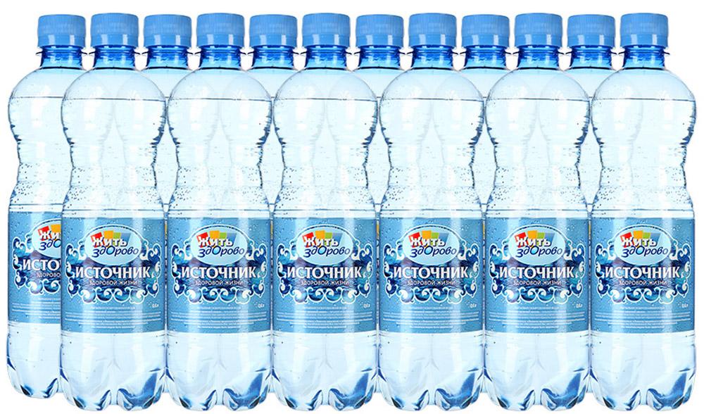 """""""Источник здоровой жизни"""" питьевая вода газированная, 12 шт по 0,6 л 00-00000161"""