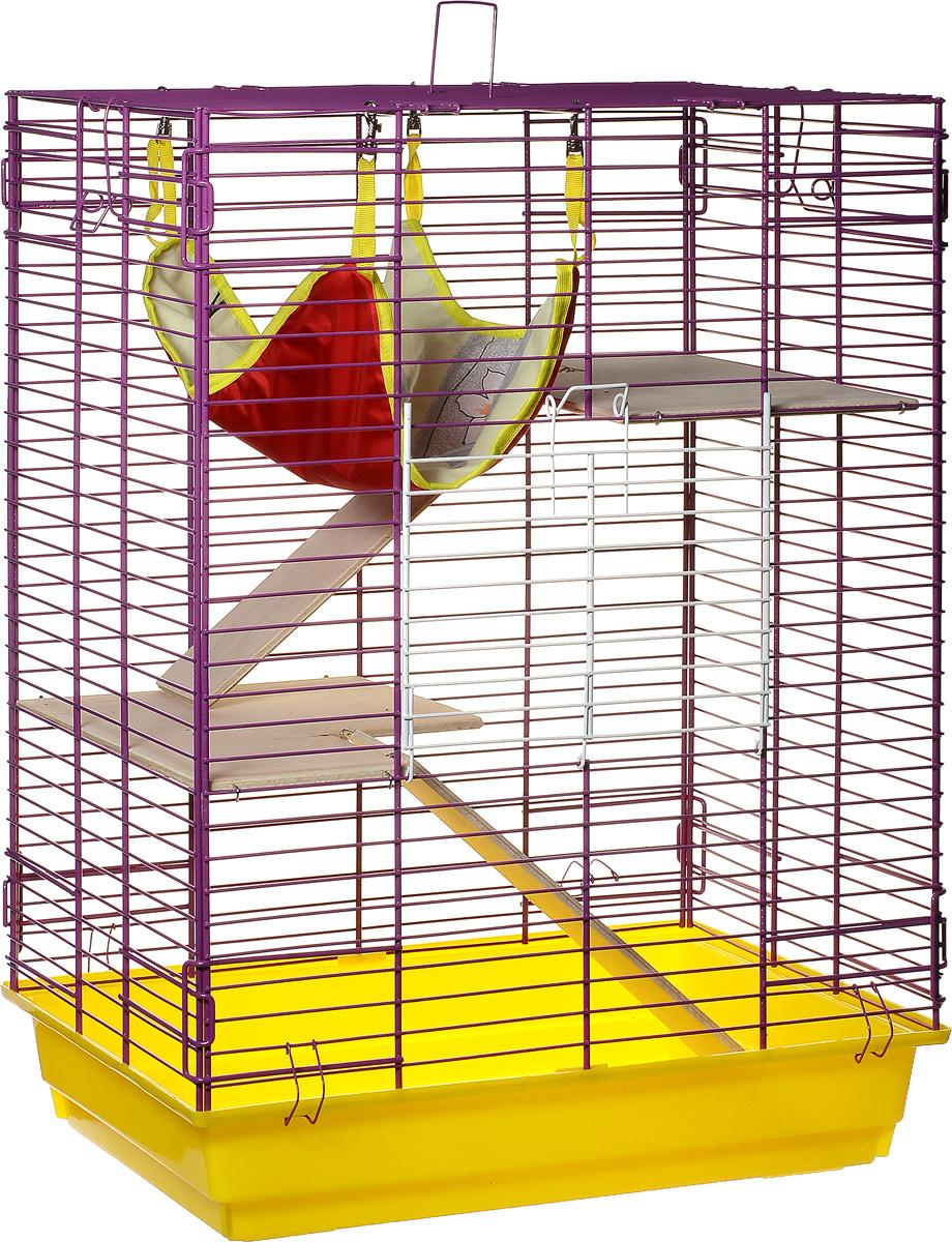 Клетка для шиншилл и хорьков ЗооМарк, цвет: желтый поддон, фиолетовая решетка, 59 х 41 х 79 см. 725дк725дкЖФКлетка ЗооМарк, выполненная из полипропилена и металла, подходит для шиншилл и хорьков. Большая клетка оборудована длинными лестницами и гамаком. Изделие имеет яркий поддон, удобно в использовании и легко чистится. Сверху имеется ручка для переноски. Такая клетка станет уединенным личным пространством и уютным домиком для грызуна.