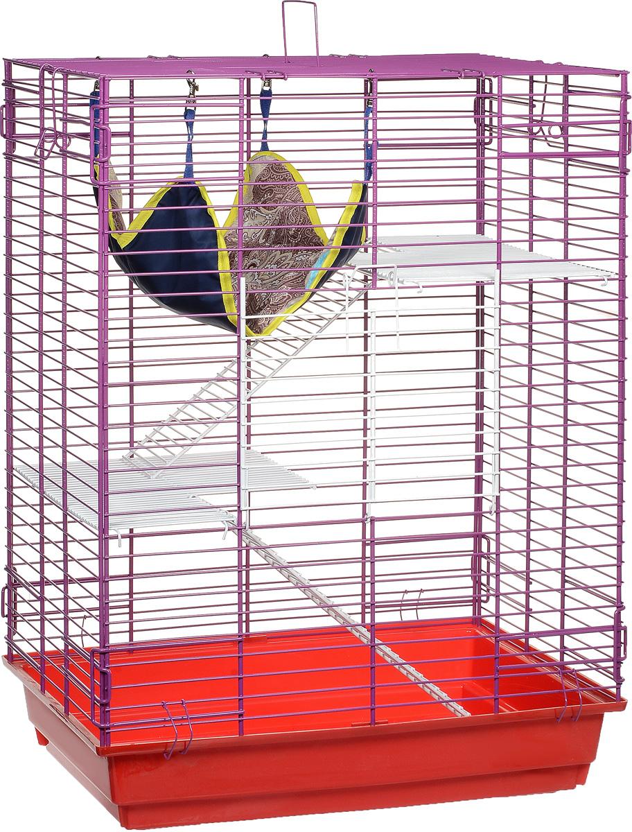 Клетка для шиншилл и хорьков ЗооМарк, цвет: красный поддон, фиолетовая решетка, 59 х 41 х 79 см. 725жк725жкКФКлетка ЗооМарк, выполненная из полипропилена и металла, подходит для шиншилл и хорьков. Большая клетка оборудована длинными лестницами и гамаком. Изделие имеет яркий поддон, удобно в использовании и легко чистится. Сверху имеется ручка для переноски. Такая клетка станет уединенным личным пространством и уютным домиком для грызуна.
