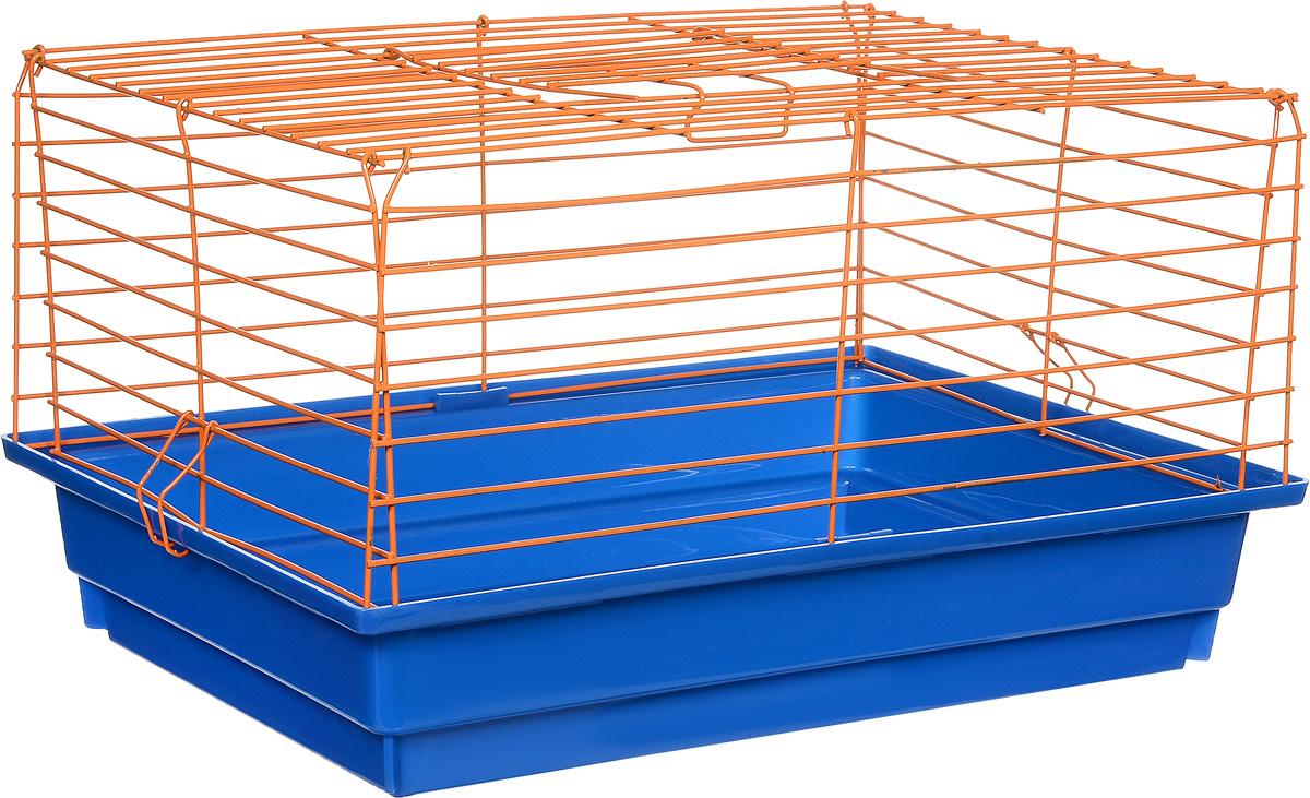 Клетка для кролика ЗооМарк, цвет: синий поддон, оранжевая решетка, 50 х 35 х 30 см610СОКлассическая клетка ЗооМарк со сплошным дном станет уединенным личным пространством и уютным домиком для кролика. Изделие выполнено из металла и пластика. Клетка надежно закрывается на защелки. Легко чистится. Для более удобной транспортировки клетку можно сложить.