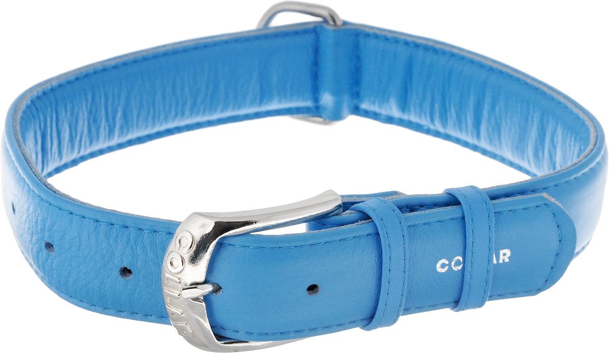 Ошейник для собак CoLLaR Glamour, цвет: синий, ширина 3,5 см, обхват шеи 46-60 см. 3458234582Ошейник CoLLaR Glamour изготовлен из натуральной кожи, устойчивой к влажности и перепадам температур. Клеевой слой, сверхпрочные нити, крепкие металлические элементы делают ошейник надежным и долговечным. Размер ошейника регулируется при помощи металлической пряжки. Имеется металлическое кольцо для крепления поводка. Ваша собака тоже хочет выглядеть стильно! Такой модный ошейник с объемной надписью Collar станет для питомца отличным украшением и выделит его среди остальных животных. Изделие отличается высоким качеством, удобством и универсальностью. Обхват шеи: 46-60 см. Ширина: 3,5 см.