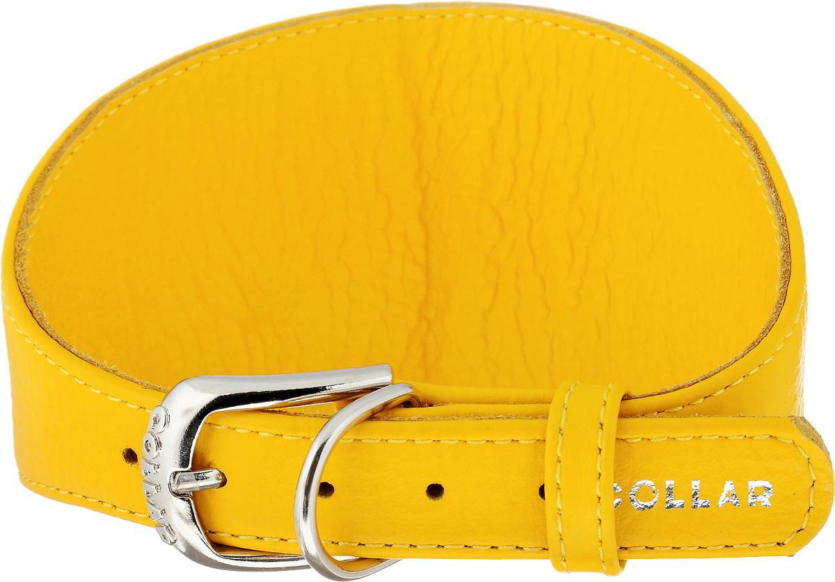 Ошейник для борзых CoLLaR Glamour, цвет: желтый, ширина 2 см, обхват шеи 34-40 см34678Ошейник для борзых собак CoLLaR Glamour, выполненный из натуральной кожи, устойчив к влажности и перепадам температур. Крепкие металлические элементы делают ошейник надежным и долговечным. Изделие отличается высоким качеством, удобством и универсальностью. Размер ошейника регулируется при помощи пряжки, зафиксированной на одном из 5 отверстий. Минимальный обхват шеи: 34 см. Максимальный обхват шеи: 40 см. Минимальная ширина: 2 см. Максимальная ширина: 8 см.