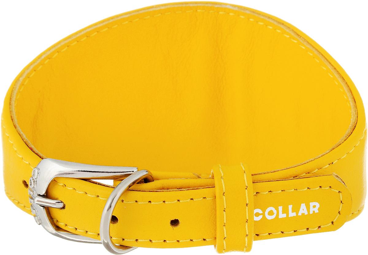 Ошейник для борзых CoLLaR Glamour, цвет: желтый, ширина 1,5 см, обхват шеи 26-32 см34658Ошейник для борзых собак CoLLaR Glamour, выполненный из натуральной кожи, устойчив к влажности и перепадам температур. Крепкие металлические элементы делают ошейник надежным и долговечным. Изделие отличается высоким качеством, удобством и универсальностью. Размер ошейника регулируется при помощи пряжки, зафиксированной на одном из 5 отверстий. Минимальный обхват шеи: 26 см. Максимальный обхват шеи: 32 см. Минимальная ширина: 1,5 см. Максимальная ширина: 5 см.