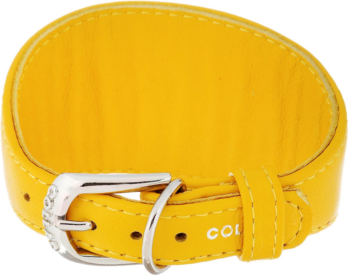Ошейник для борзых CoLLaR Glamour, цвет: желтый, ширина 1,5 см, обхват шеи 23-27 см34648Ошейник для борзых собак CoLLaR Glamour, выполненный из натуральной кожи, устойчив к влажности и перепадам температур. Крепкие металлические элементы делают ошейник надежным и долговечным. Изделие отличается высоким качеством, удобством и универсальностью. Размер ошейника регулируется при помощи пряжки, зафиксированной на одном из 5 отверстий. Минимальный обхват шеи: 23 см. Максимальный обхват шеи: 27 см. Минимальная ширина: 1,5 см. Максимальная ширина: 5 см.