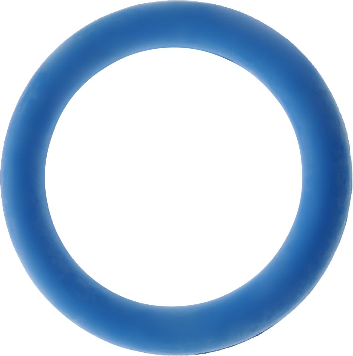 Игрушка для собак Каскад Кольцо, цвет: голубой, диаметр 15,5 см27799286_голубойИгрушка для собак Каскад Кольцо изготовлена из мягкой и прочной безопасной резины, устойчивой к разгрызанию. Изделие отличается прочностью и в то же время гибкостью и эластичностью. Такая игрушка прекрасно подойдет для игр вашей собаки.