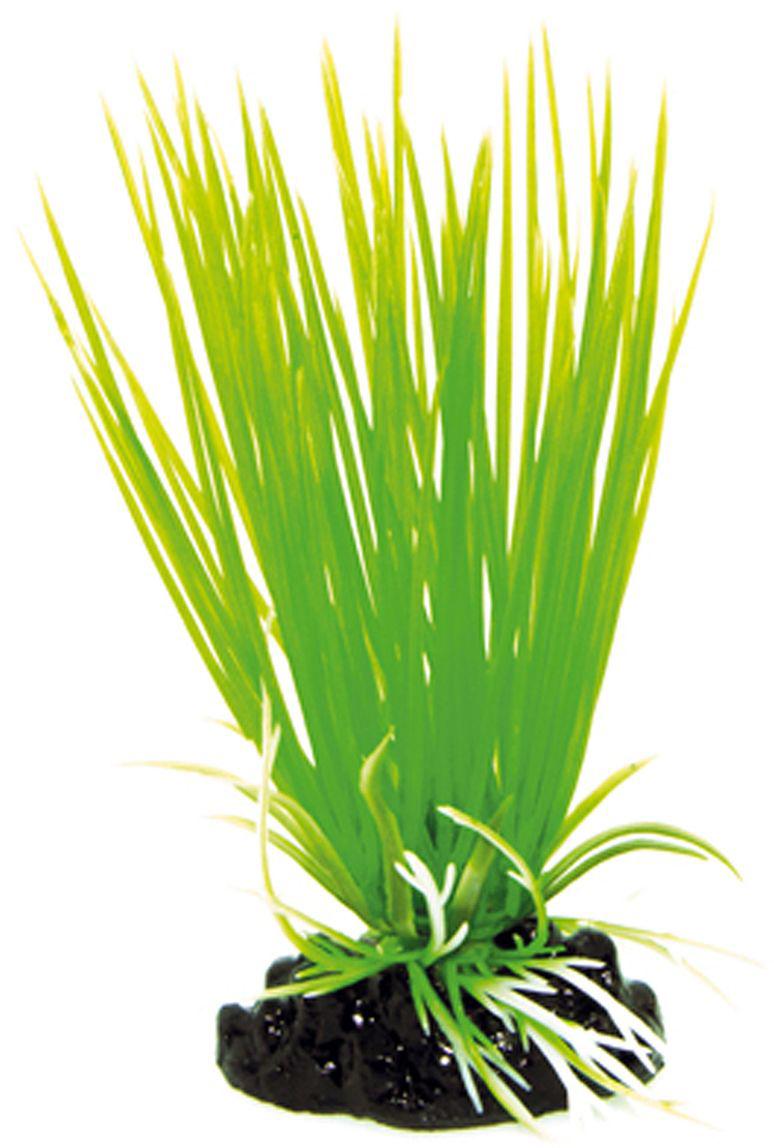 Искусственное растение для аквариума Dezzie, 10 см. 56020055602005Подводное искусственное растение для аквариума Dezzie является неотъемлемой частью композиции аквариума, радует глаз, а также может быть уютным убежищем для рыб и других обитателей аквариума. Пластиковое растение имеет устойчивое дно, которое не нуждается в дополнительном утяжелении и легко устанавливается в грунт. Растение очень практично в использовании, имеет стойкую к воздействию воды окраску и не требует обременительного ухода. Его можно легко достать и протереть тряпкой во время уборки аквариума. Растения из пластика создадут неповторимый дизайн пресноводного или морского аквариума. Высота растения: 10 см.