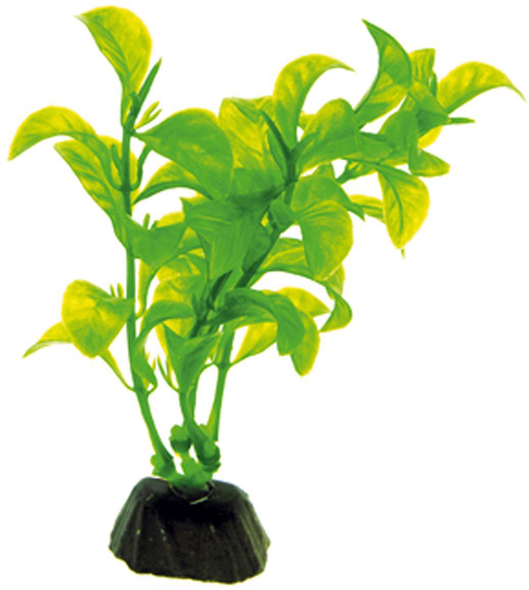 Искусственное растение для аквариума Dezzie, 10 см. 56020135602013Подводное искусственное растение для аквариума Dezzie является неотъемлемой частью композиции аквариума, радует глаз, а также может быть уютным убежищем для рыб и других обитателей аквариума. Пластиковое растение имеет устойчивое дно, которое не нуждается в дополнительном утяжелении и легко устанавливается в грунт. Растение очень практично в использовании, имеет стойкую к воздействию воды окраску и не требует обременительного ухода. Его можно легко достать и протереть тряпкой во время уборки аквариума. Растения из пластика создадут неповторимый дизайн пресноводного или морского аквариума. Высота растения: 10 см.