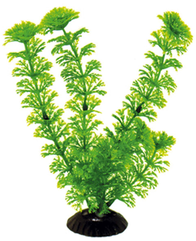 Искусственное растение для аквариума Dezzie, 20 см. 56020325602032Подводное искусственное растение для аквариума Dezzie является неотъемлемой частью композиции аквариума, радует глаз, а также может быть уютным убежищем для рыб и других обитателей аквариума. Пластиковое растение имеет устойчивое дно, которое не нуждается в дополнительном утяжелении и легко устанавливается в грунт. Растение очень практично в использовании, имеет стойкую к воздействию воды окраску и не требует обременительного ухода. Его можно легко достать и протереть тряпкой во время уборки аквариума. Растения из пластика создадут неповторимый дизайн пресноводного или морского аквариума. Высота растения: 20 см.